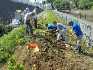 地域住民・都市大生・区役所で整備が進む早渕川・老馬谷ガーデン