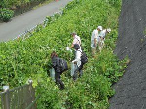 9月3日、地域住民と区役所職員が草刈りをしながらゴミ拾い