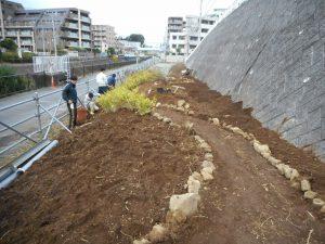 10月22日~、都市大学生が整地し、石を並べ園路等を作り、植栽の植え込み