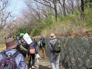 山崎公園の草木を説明