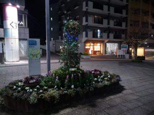 イルミネーションが点灯した花壇