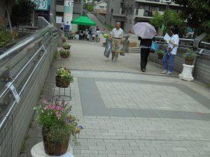 花はちコンテスト風景