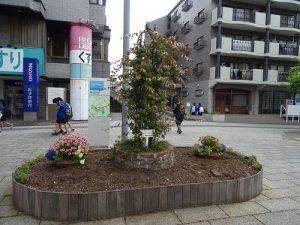 花株や球根の抜き取りと耕作、堆肥入れ
