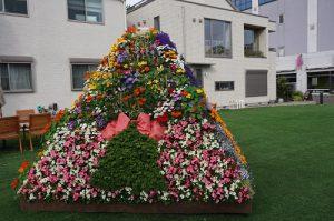 ハウスクエアで展示されていたお花のピラミッド