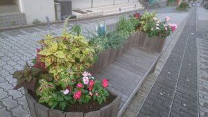ベンチ花壇の枯れた花の植え替え