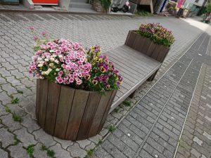 春のベンチ花壇