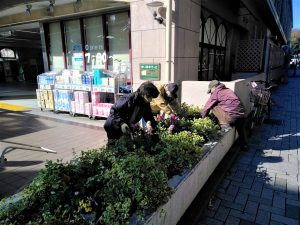 駅前花壇の植え込み