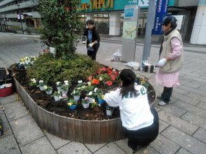 11月18日シンボル花壇の植え替え風景