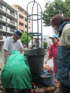 タワーの中に保水の為のコケを入れる