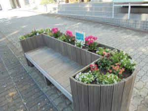 植え替えた花壇ベンチ
