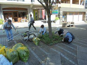 街路樹花壇の剪定