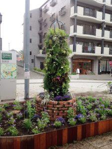 涼しげな花壇