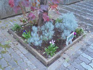 マンション玄関前の花壇