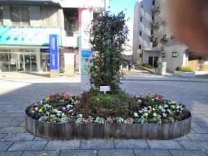 2月のピョンチャンオリンピックに向けて日の丸イメージで頑張れ日本!
