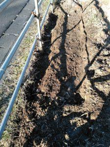 カヤの根が絡んだ層は厚さが15センチもあり、パイプの外側にもある