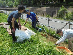 トマト苗床を作る都市緑化研の学生