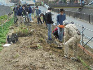 都市大都市緑化研と飯島研究室の先生と学生