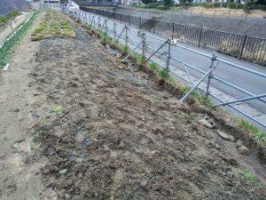 3月6~7日 業者にカヤの根掘り出しの溝を掘ってもらいました