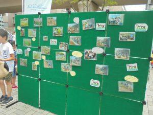 活動の写真をパネル展示