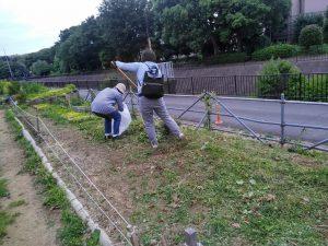 刈った草集め
