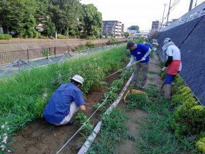 花壇の草取りと耕し