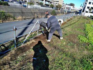 運び出した腐葉土は道路際の溝に入れました