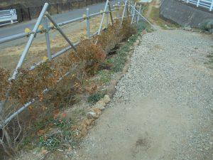 掘り出した石で作った鍛冶橋口の見切りを作りました