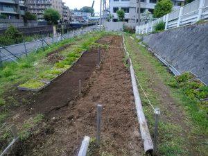 種まき準備の終えた苗床