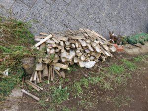 見切りの竹は割って芋煮会の燃料に