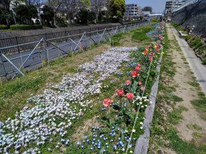 華やかな花が咲くガーデンには多くの人が散歩に訪れます