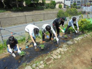 都市緑化研の学生も植えました
