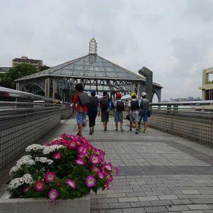 お花が咲く中川の歩道橋