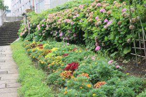 くさぶえのみち入口の花壇