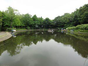 散歩コースにある、お気に入りの公園。