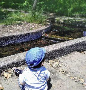 #1歳男の子 #水遊びしたい