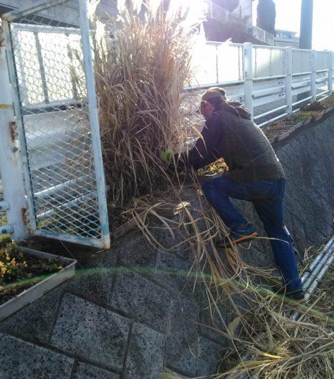 【HRG】2019年12月18日(水) 春に向けて準備と年末の大掃除