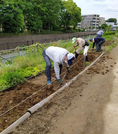 【HRG】2020年5月20日(土)夏花の種まき準備