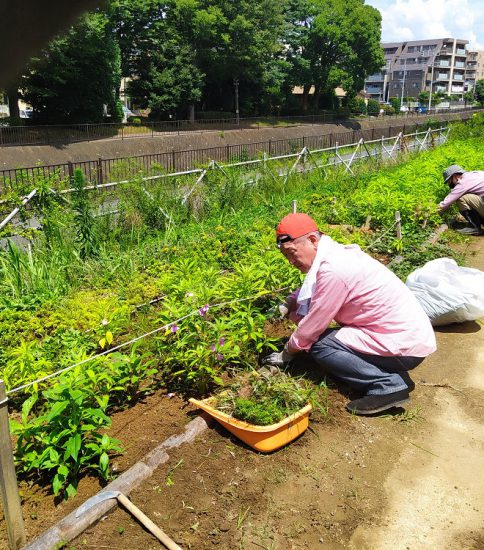 【HRG】2020年8月1日(土)梅雨明け、夏の草取りと草刈り