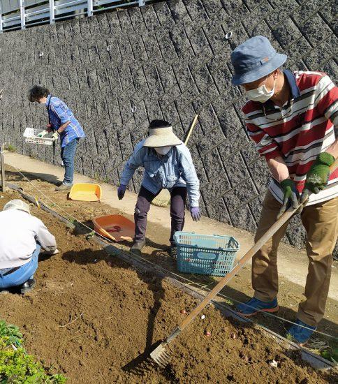 【HRG】2020年10月21日(水)来春に備えネモフィラの種まき