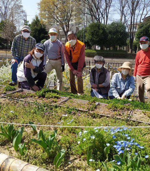 【HRG】2021年3月17日(水)春の花が一杯、見切りの竹交換作業