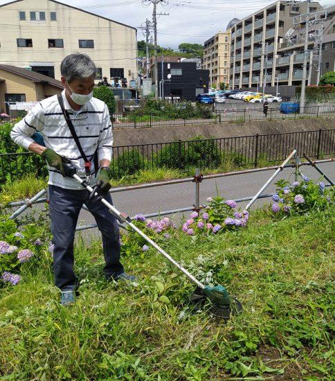 【HRG】2021年6月5日(土) 雑草取り、草刈りでスッキリ